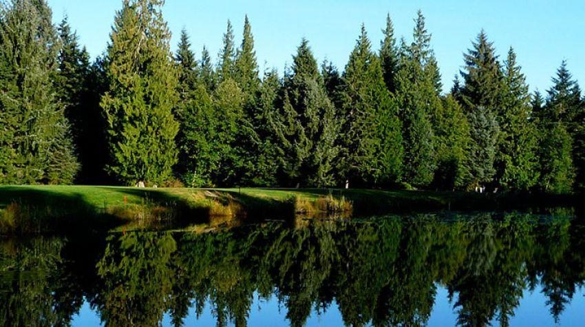 Storey Creek GC
