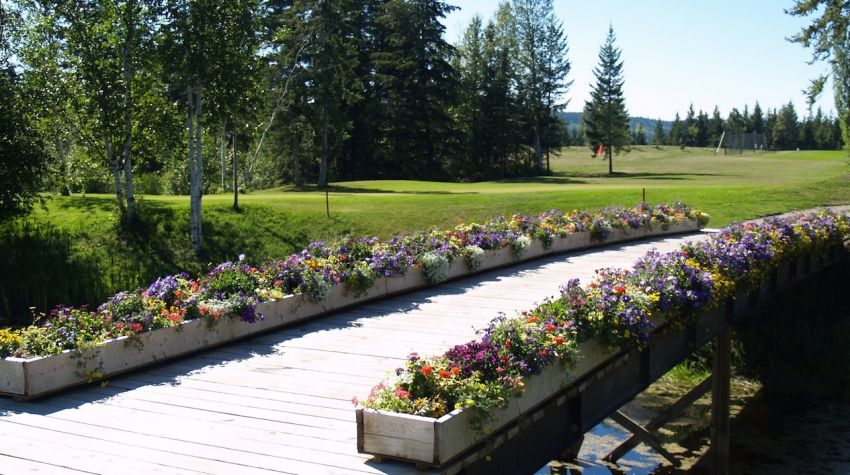 Flowered bridge