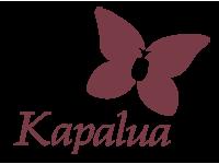 Plantation Course At Kapalua