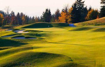 Golf Club At Newcastle - China Creek Gc