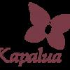 Kapalua Golf; Plantation Course - Maui