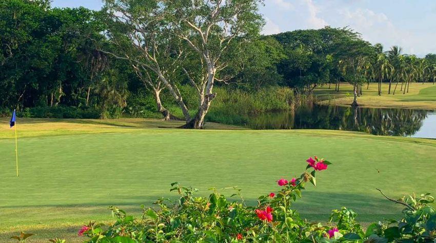 Flamingos Golf