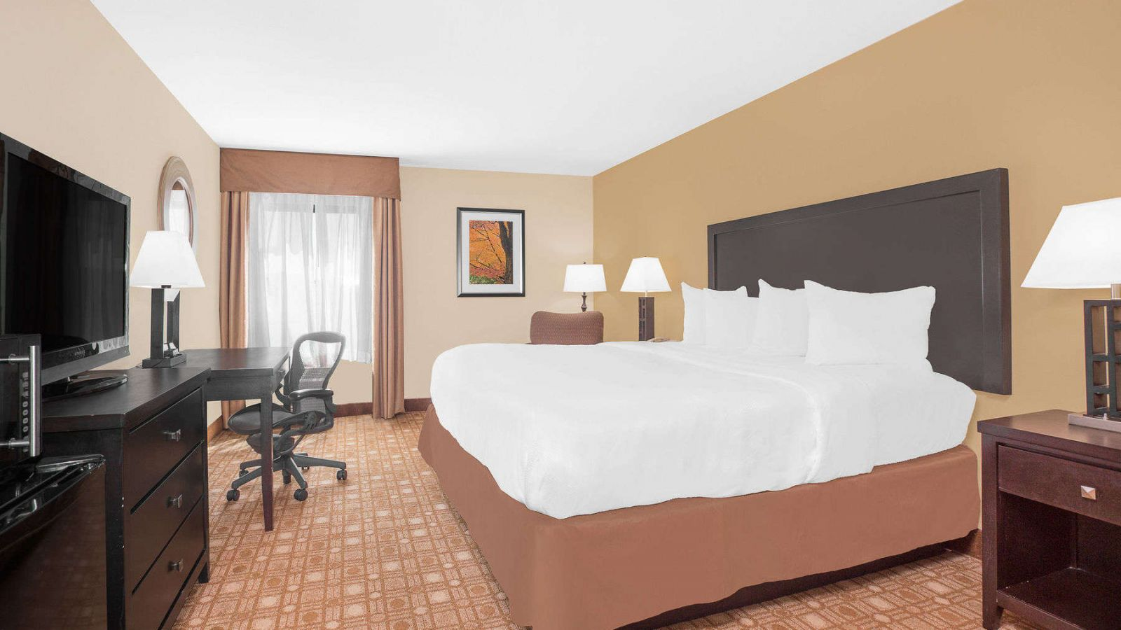 Baymont Inn & Suites Augusta - standard room