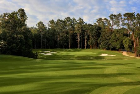 Southern Alabama RTJ Trail 5 night 4 round golf package