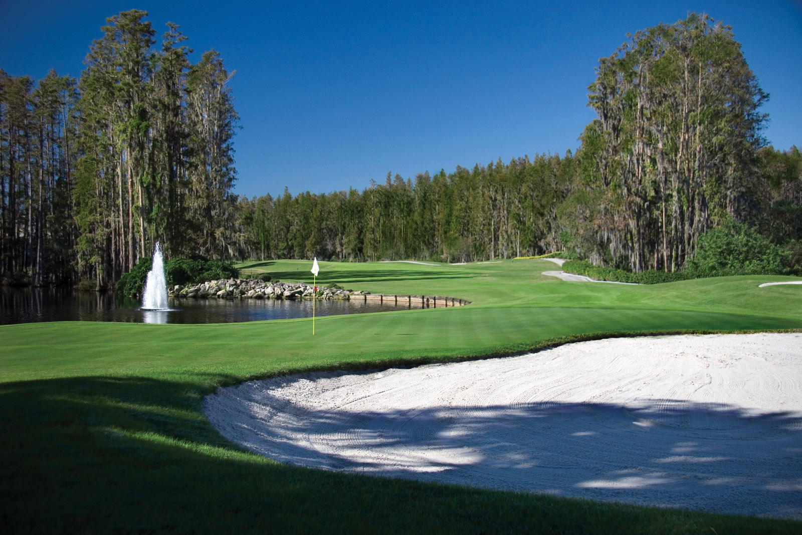 Saddlebrook Resort - 36 holes of golf on site