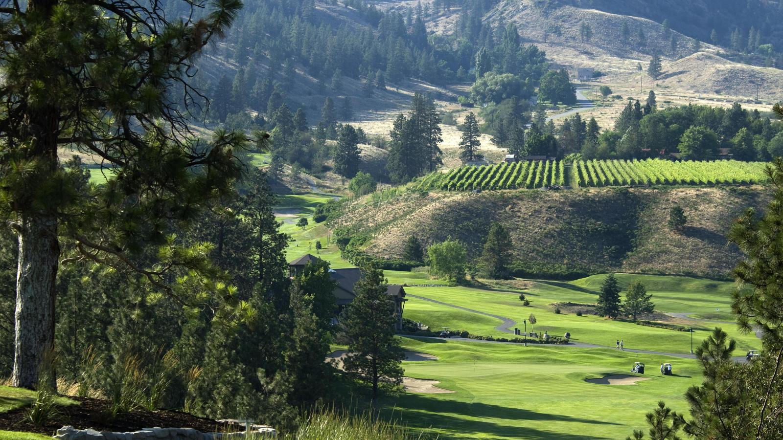 osoyoos golf package at the coast hotel. Black Bedroom Furniture Sets. Home Design Ideas